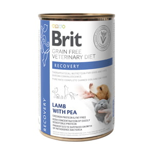 Brit GF Veterinary Diets Dog and Cat Recovery 400 g conserva