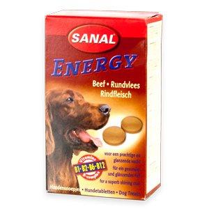 Sanal Dog Energy /Beef