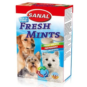 Sanal Dog Fresh Mints