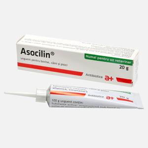 Asocilin 20 g