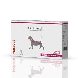 Cefabactin 500 mg 25x10 tab