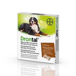 Drontal Dog Flavour XL 525/504/175 mg x 2 tab.