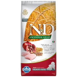 ND Ancestral Grain Dog Chicken