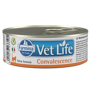 Vet Life Natural Diet Cat Convalescence conserva 85 gr