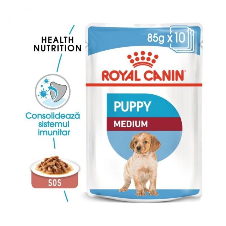 Royal Canin Wet Medium Puppy, 10 plicuri. 85 g